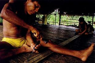 a Chocó Indian constructing one of the deadly blow dart guns