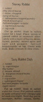 Cookbook extract - 'Savoury rabbit' and 'Tasty rabbit dish'